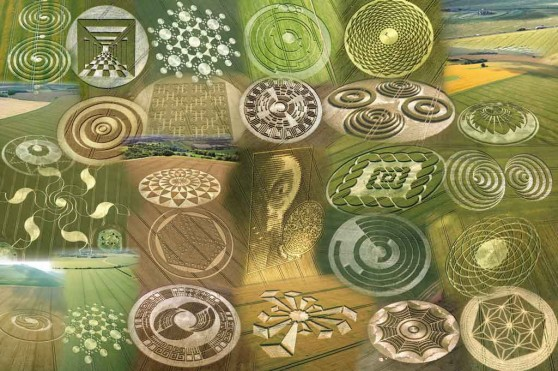 Crop Circle Collage ~ Crop Circle Photographs Research Tours